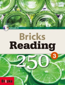 Bricks Reading 250 Level 3