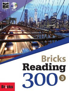 Bricks Reading 300 Level 3